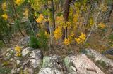 Aspens and Granite, Tahoe B85S3850